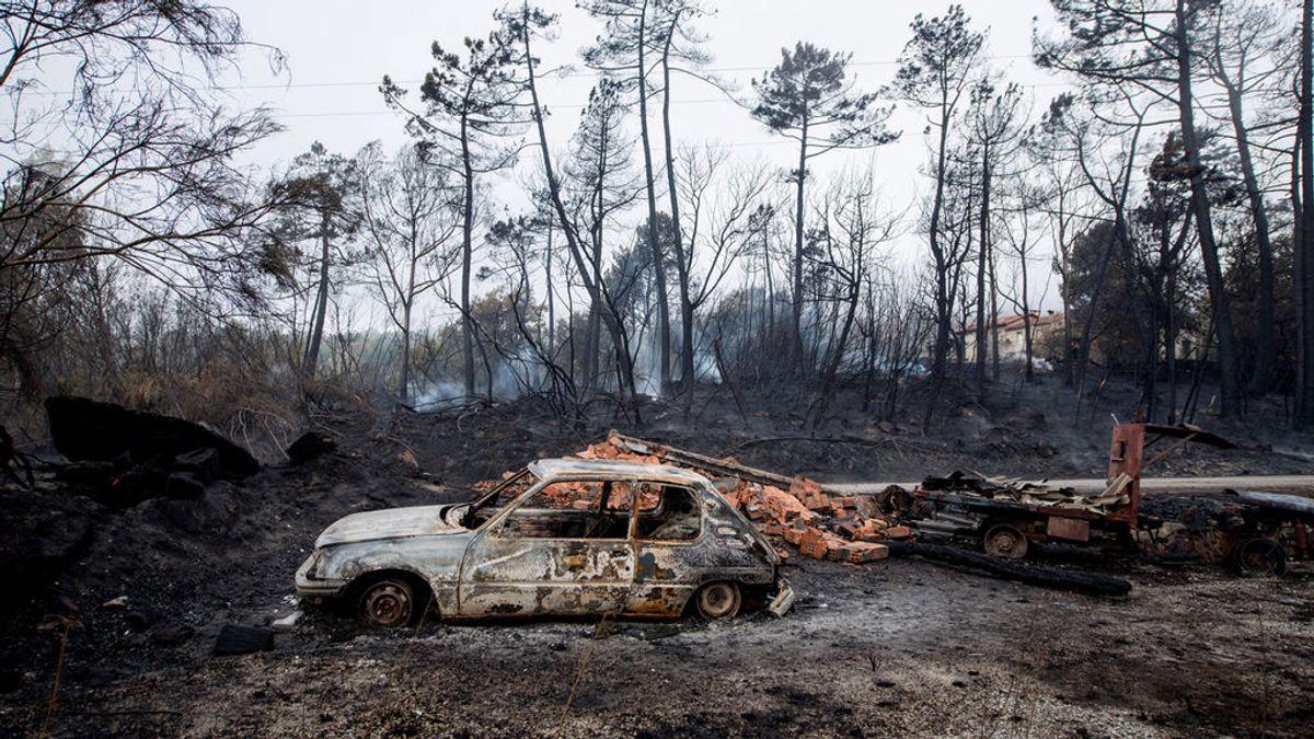 La ola de incendios en Galicia ha arrasado unas 35.500 hectáreas, más que 2014, 2015 y 2016 juntos