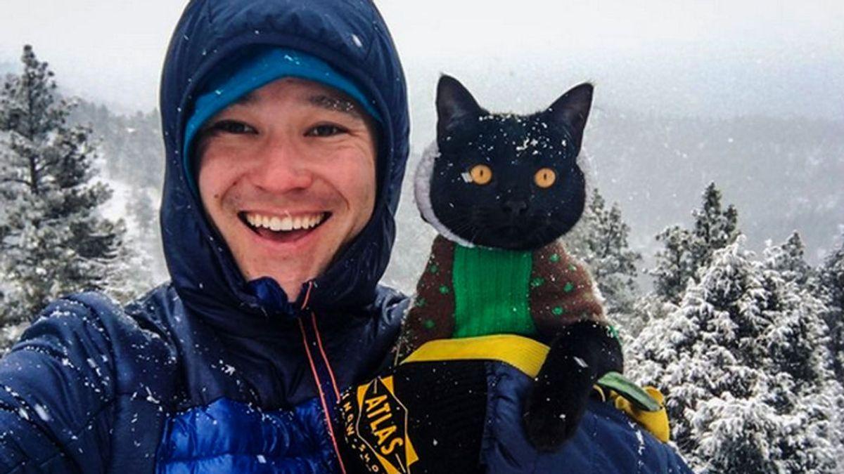 Este gato es escalador y tiene 56.000 seguidores en Instagram: visita su perfil y tú también le seguirás