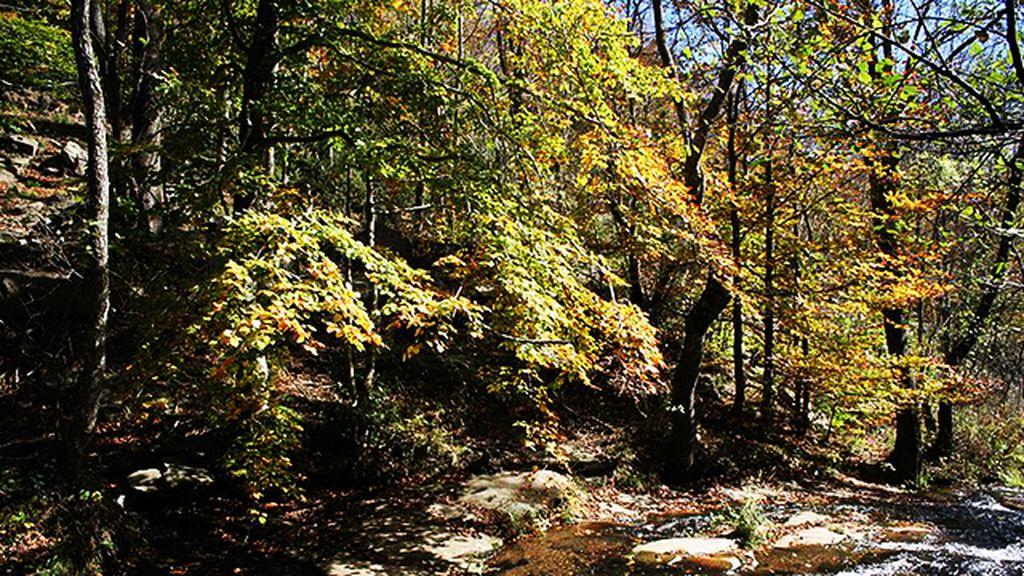 Irati y otros lugares para visitar, sobre todo, en otoño