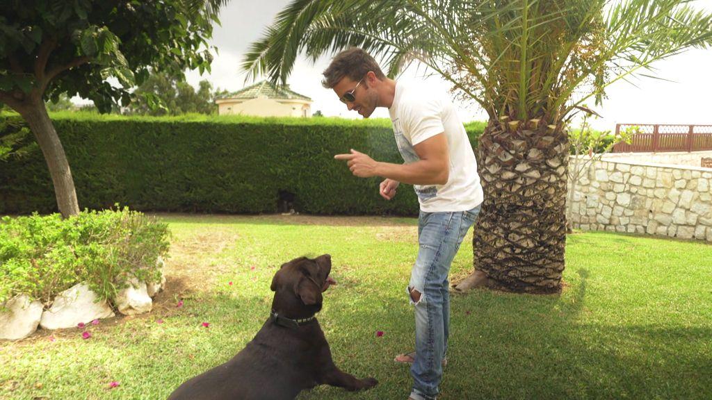 FOTOS: El increíble jardín donde Pablo Alborán 'charla' con su perro, Terral