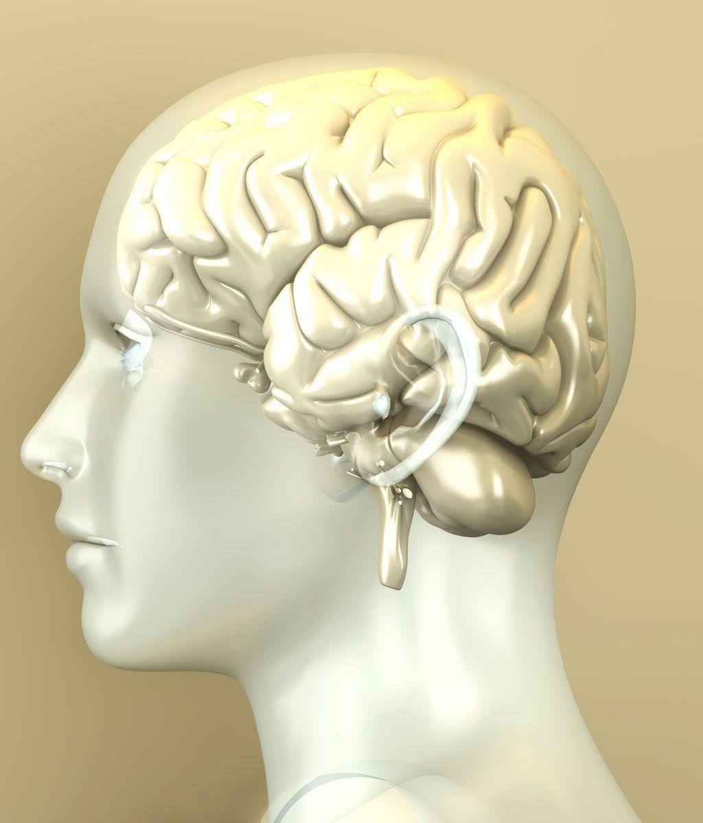 Descubren alteraciones en el 'cableado cerebral' de los pacientes con esquizofrenia