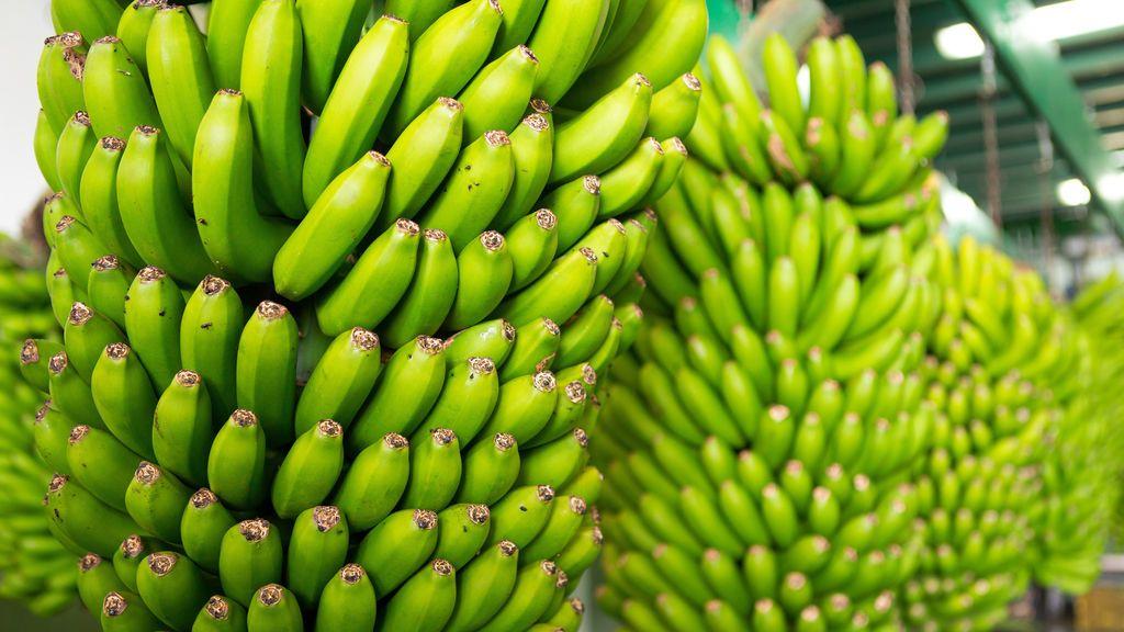 ¿Sabes que fruta está destinada a desaparecer?