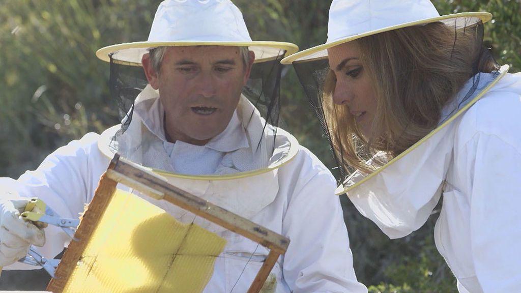 El secreto más dulce de Sos: la miel
