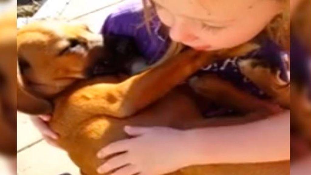 El momento de una niña acunando a su mascota que te va a enternecer
