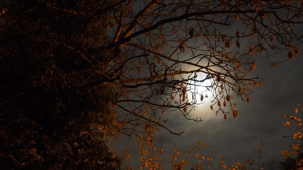 super-moon-1827567_1920
