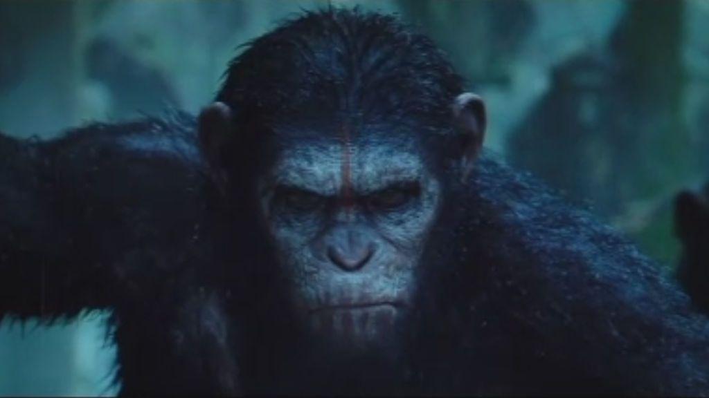 'El amanecer del planeta de los simios' llega el domingo a Telecinco