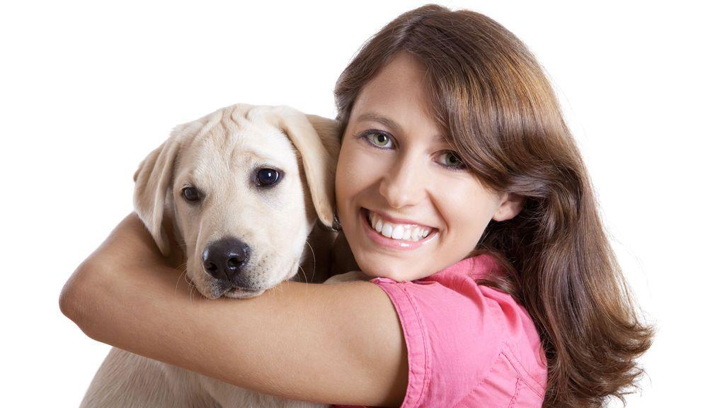 Perros y dueños