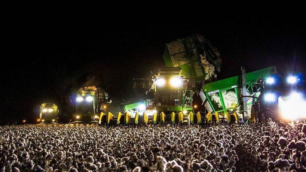 ¿Una festival de música? Mejor mira la imagen dos veces