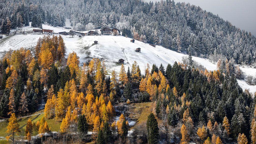 Árboles de colores otoñales en el pueblo austriaco occidental de Neustift, Austria