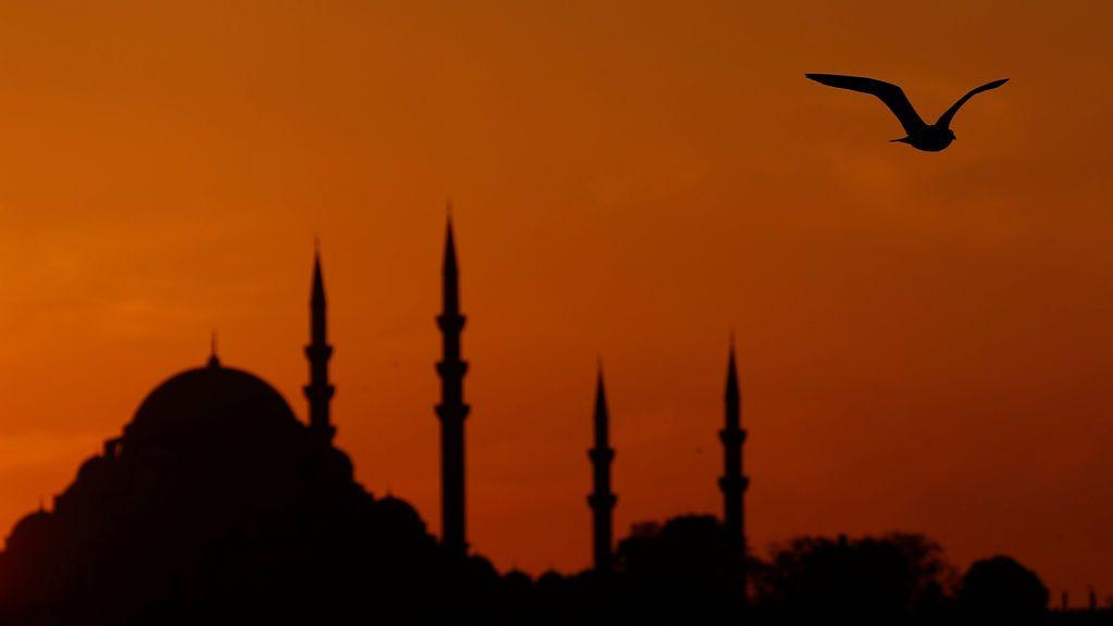 Una gaviota sobrevuela el Bósforo mientras el sol se pone sobre la mezquita de Süleymaniye en Estambul, Turquía