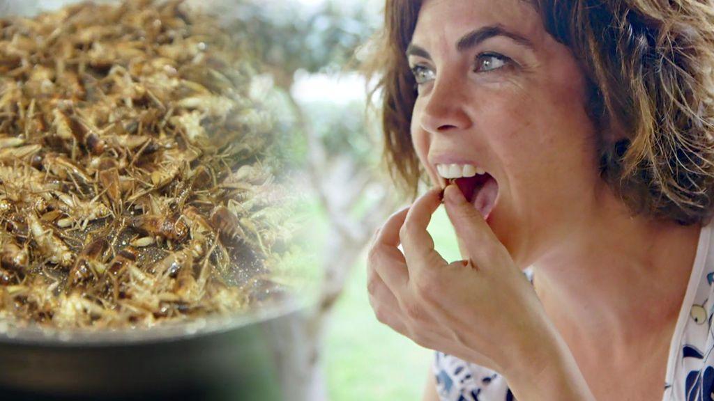 ¡Samanta come grillos fritos! (y le gustan)