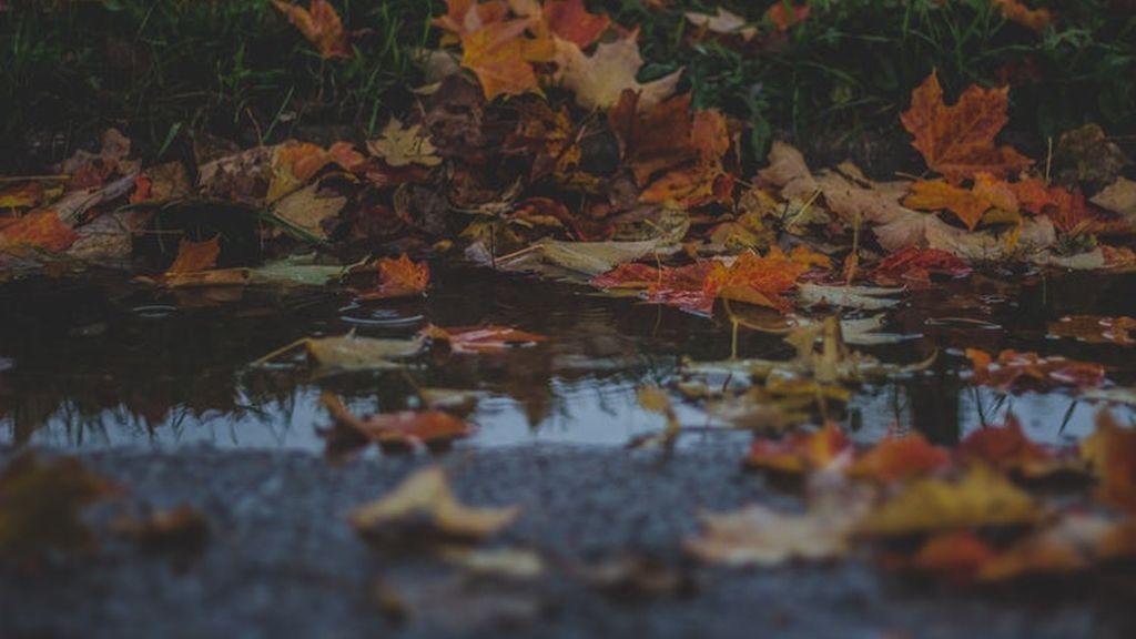¿Cómo sabemos con exactitud la cantidad de lluvia caída?