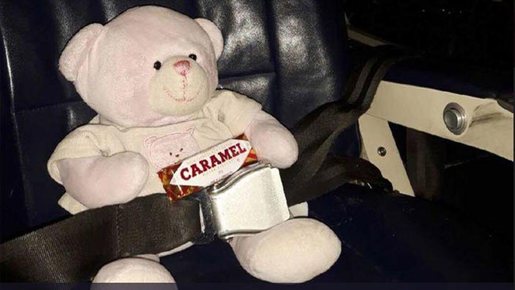 Osito de peluche perdido viaja 321 km para reunirse con su dueña de cuatro años
