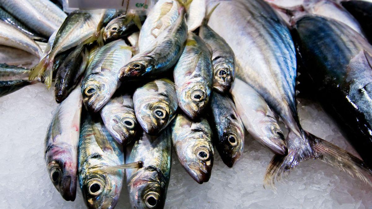 Comerá cabezas de pescado gratis para siempre por salvar la vida de cuatro personas