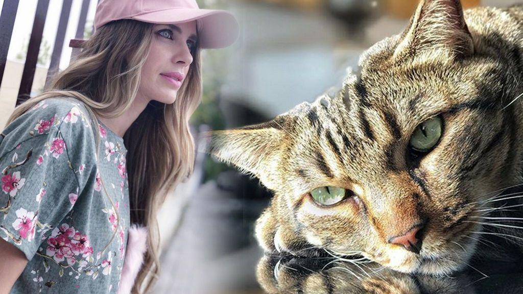 "Vanesa Romero dice adiós a su gato Humphrey: ""Gracias por tu amor incondicional"""