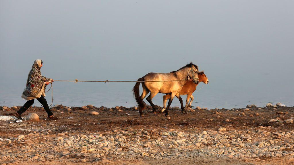 Un hombre camina sus caballos en las orillas del río Tawi en Jammu, India