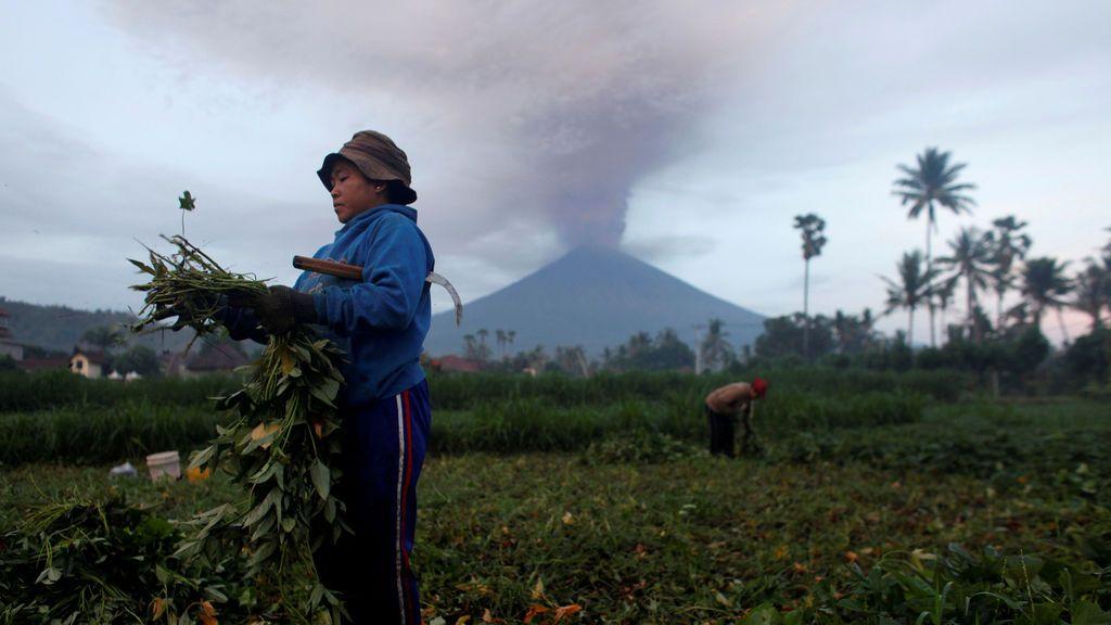 Los agricultores cuidan sus cultivos cuando el Monte Agung entra en erupción en el fondo en Amed, Karangasem Regency, Bali, Indonesia