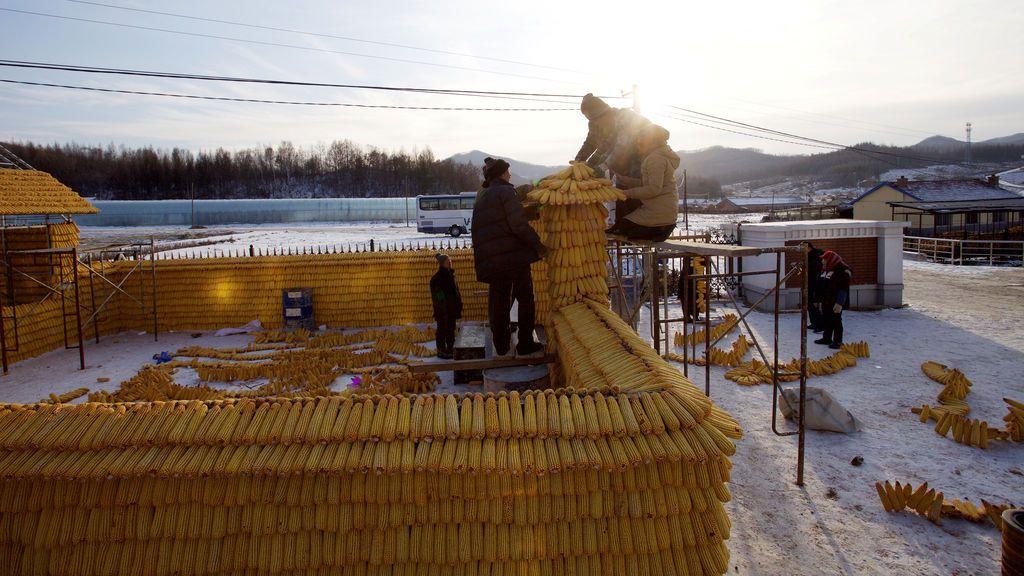 Los aldeanos construyen una casa con mazorcas de maíz en Jilin, provincia de Jilin, China