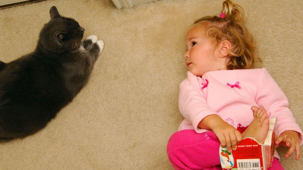 Niña con su gato