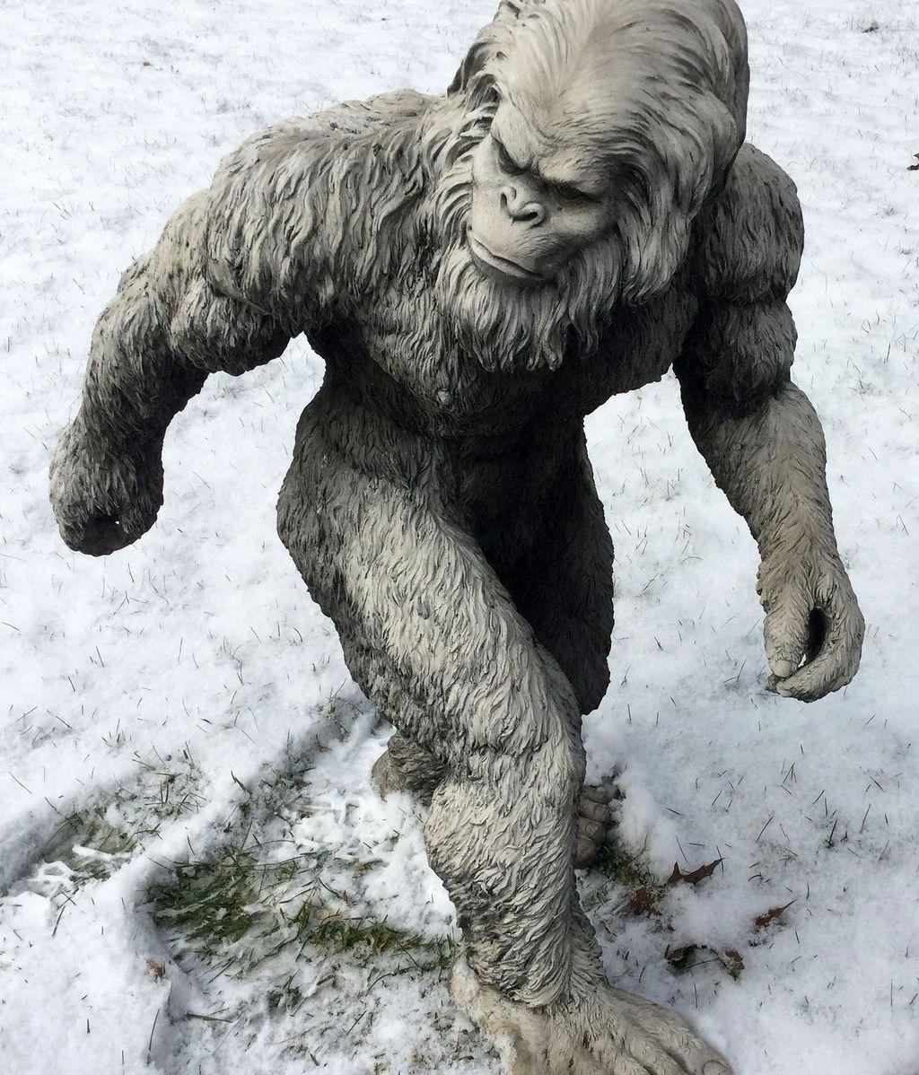 bigfoot-1620140_1920