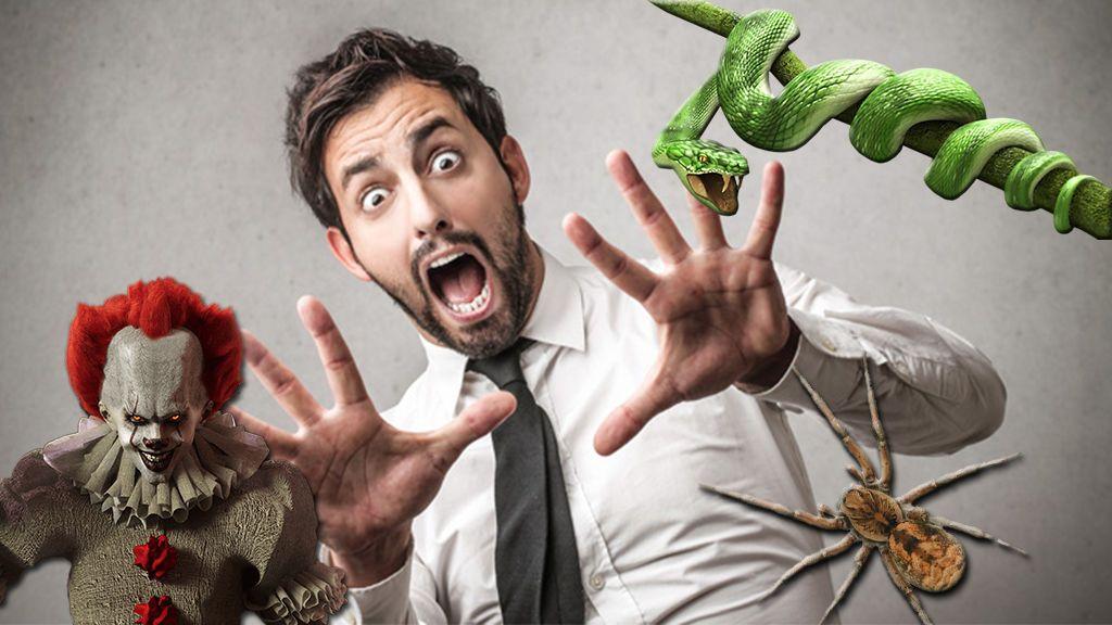 Arañas, serpientes, payasos... ¿cuál es tu mayor fobia? ¡Vota ya!