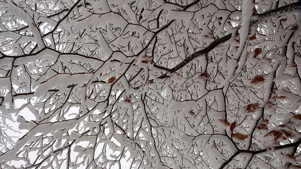 El frío ya se ha instalado en España, con temperaturas de -14ºC en los Pirineos