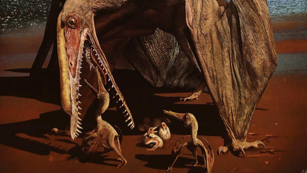 Hallan más de 200 huevos fosilizados de pterosaurio con embriones perfectamente conservados