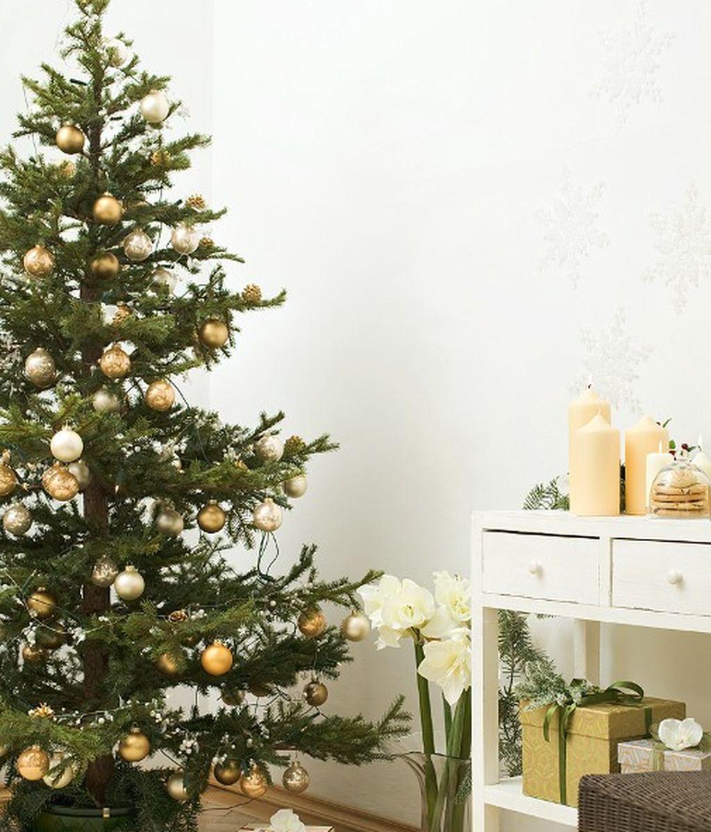 ¿Sabes cuál es el día oficial para poner el árbol de Navidad?