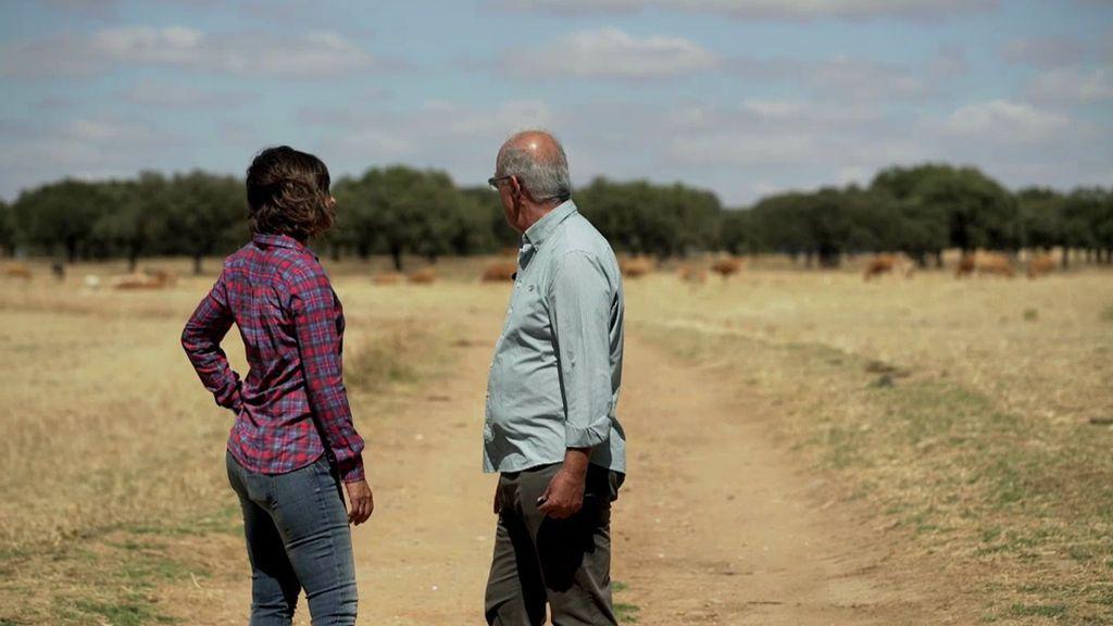 Vacas, corderos, halcones… Así se abastece a los países árabes desde Extremadura