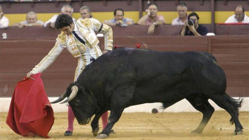 El TC suspende cautelarmente la ley de 'toros a la balear' que prohíbe la muerte del animal
