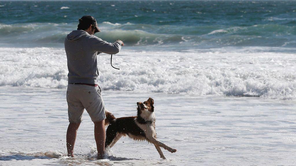 Un hombre juega con su perro en una playa de Viña del Mar, Chile