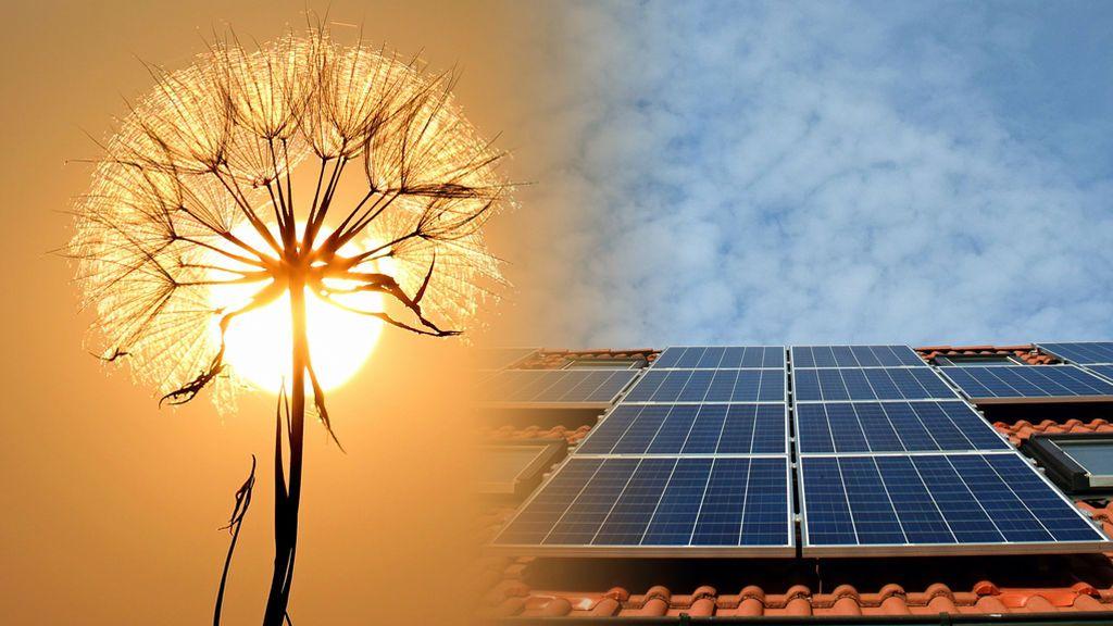 El principio del fin del polémico Impuesto del Sol: pros y contras del autoconsumo