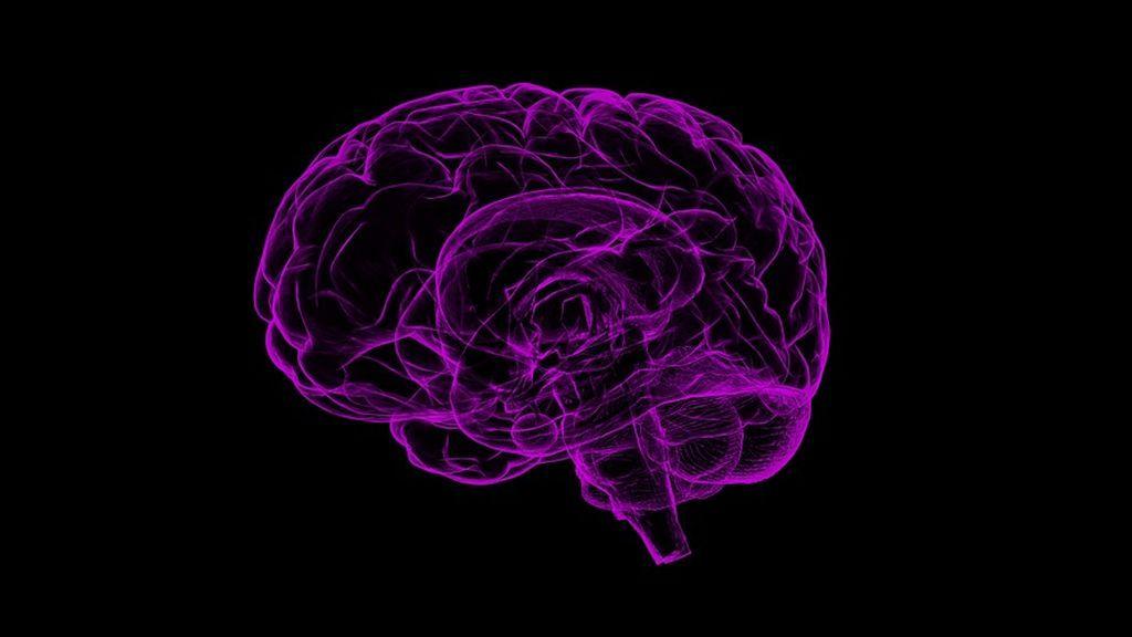 Científicos investigan si el ADN está implicado en las enfermedades neurodegenerativas