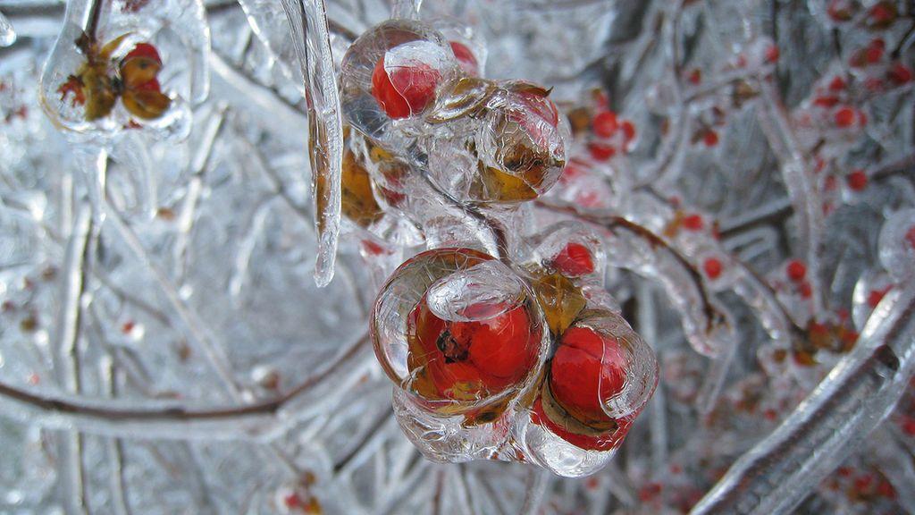 2008_ice_storm_1280x800