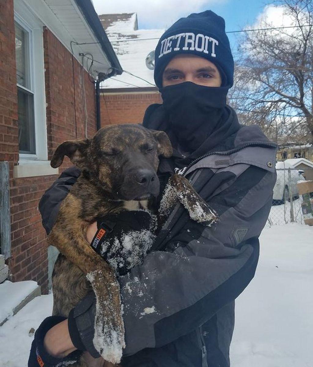 Rescatan a un perro a punto de morir a la intemperie durante una nevada