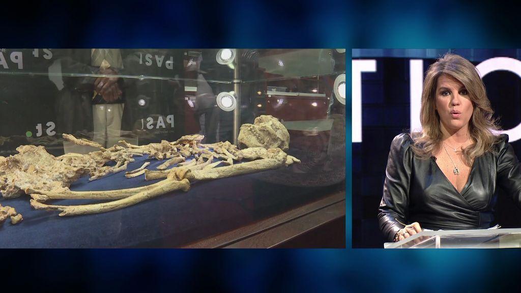 Little Foot, el fósil más completo del Australopithecus, sale a la luz
