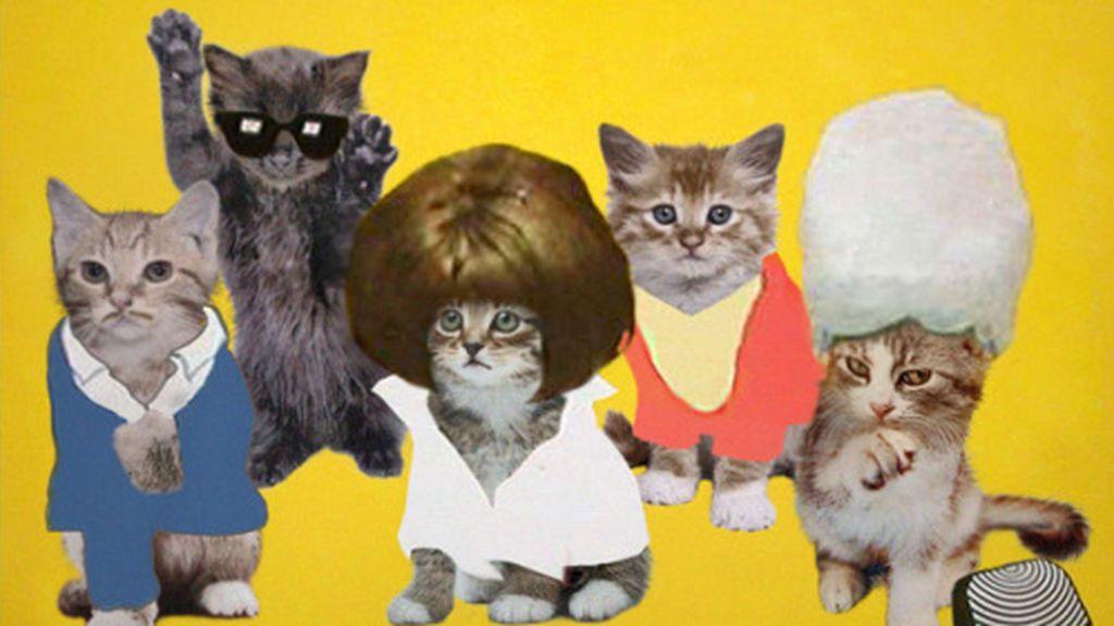 Era necesario que alguien recrease portadas de discos míticos con gatitos