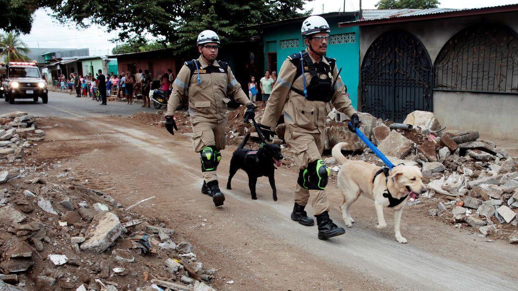 Miembros de la unidad de rescate del ejército nicaragüense y sus perros rastreadores participan en un simulacro nacional de múltiples amenazas en Managua, Nicaragua