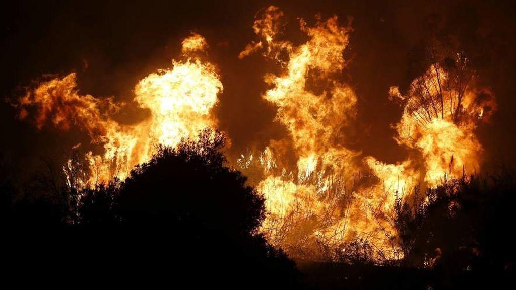 Hallado el cuerpo sin vida de una persona tras sofocar un incendio de matorrales en Málaga