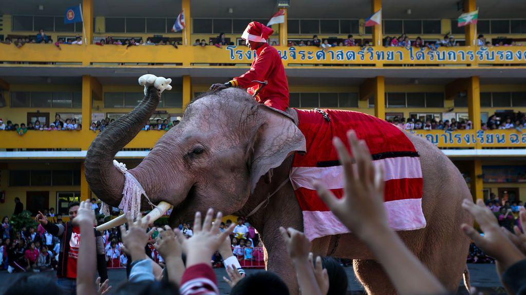 Un elefante vestido con un traje de Santa Claus distribuye una muñeca a los estudiantes durante las celebraciones de Navidad en la escuela Jirasart en Ayutthaya, Tailandia