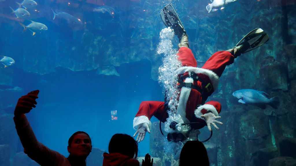 Un submarinista vestido de Papá Noel nada junto a los peces en el Acuario de París, Francia