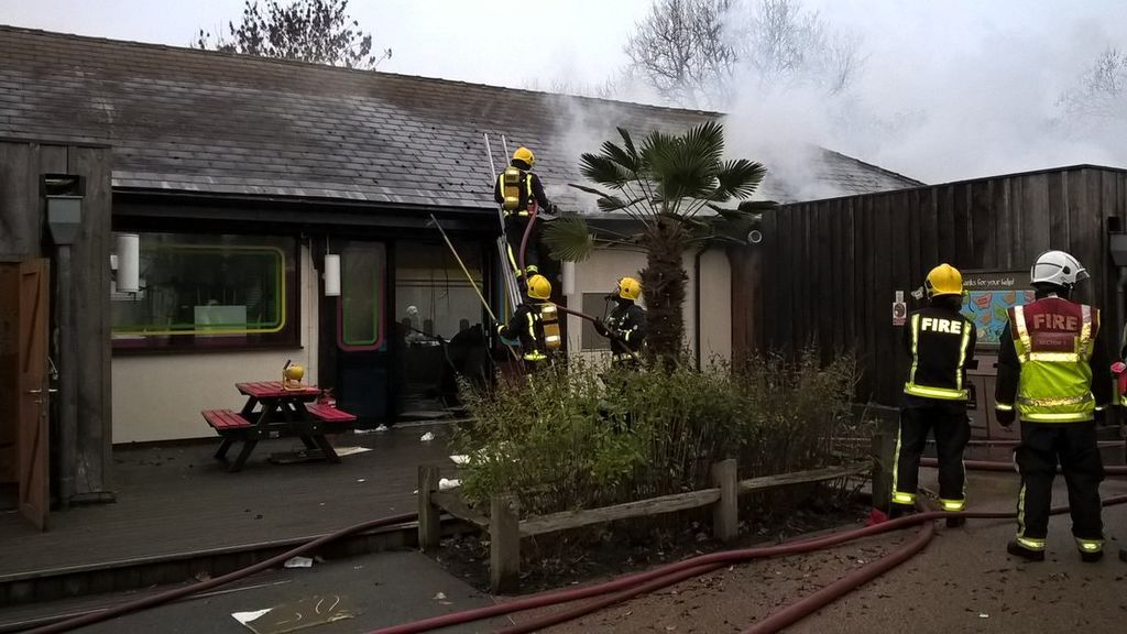 El Zoo de Londres permanecerá cerrado temporalmente por el incendio