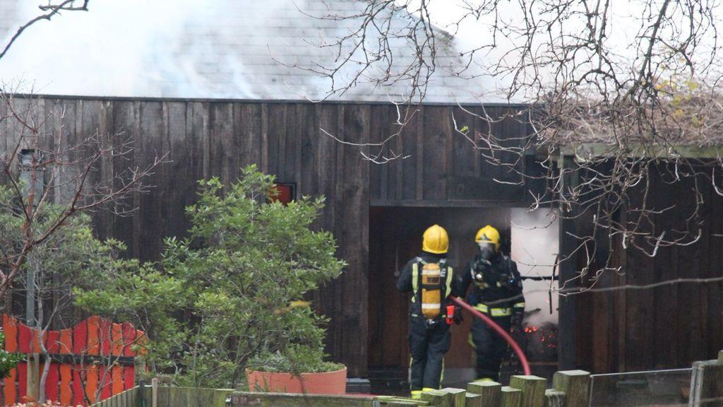 Más de 70 bomberos combaten un incendio declarado en el zoo de Londres