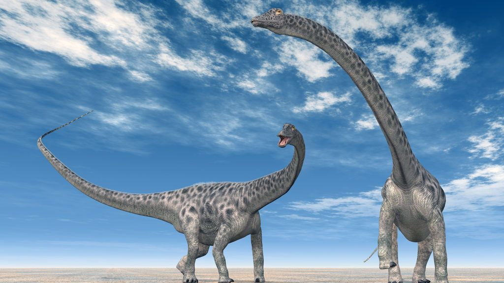 Albañiles chinos hallan 30 huevos de dinosaurio de hace 130 millones de años