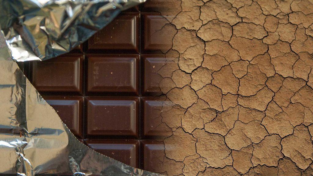 El chocolate desaparecerá en 40 años y la culpa es tuya