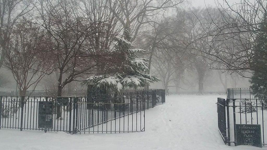 El Tompkins Square Park de Nueva York completamente nevado debido a la ola frío extremo que sacude Estados Unidos