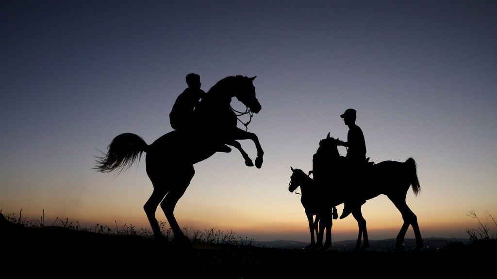 Jóvenes palestinos montan a caballo en Shuafat, un distrito al este de Jerusalén