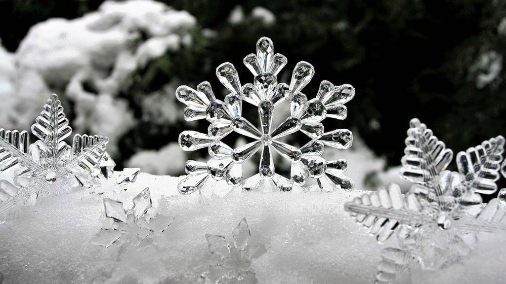 Ninguno es igual a otro, así son los distintos copos de nieve