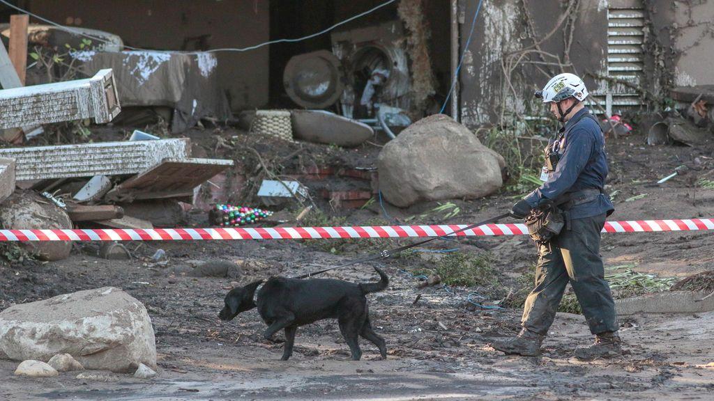 Trabajadores de búsqueda y rescate con perros recorren las propiedades después de un alud de lodo en Montecito, California