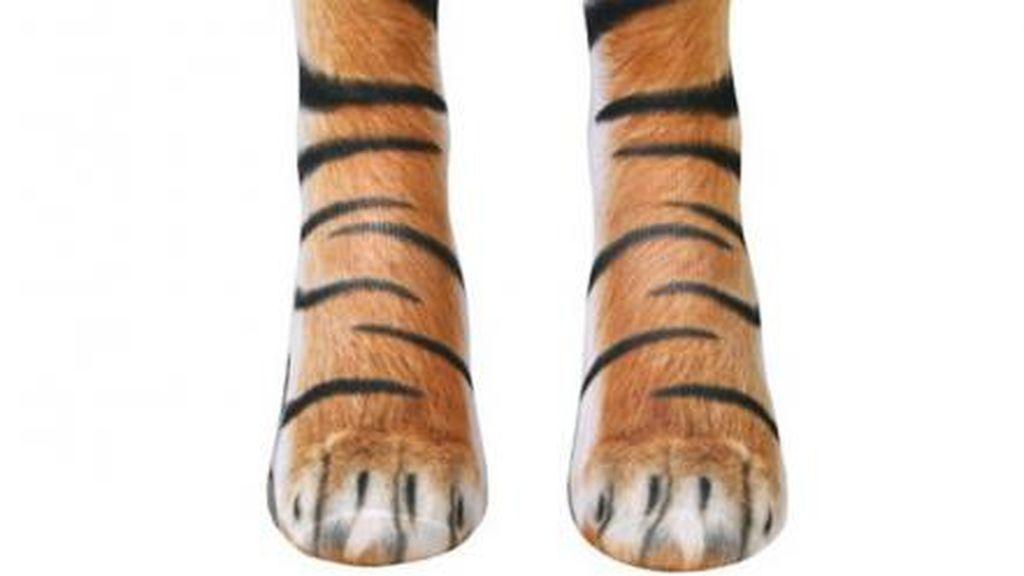 Calcetines tigre